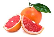 grapefruit Zdjęcie Royalty Free