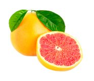 Grapefruit stock foto