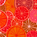 Grapefruit. Slices background, abstract art Royalty Free Stock Image