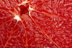 Grapefruit-2 Stock Photography