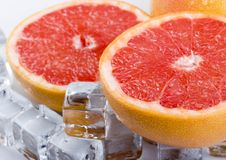 Free Grapefruit Stock Photography - 2203562