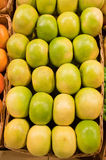Grapefruit. Green grapefruits in a basket Royalty Free Stock Photo