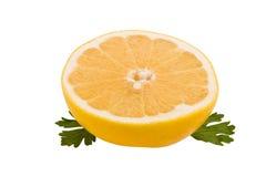 Grapefruit royalty-vrije stock foto