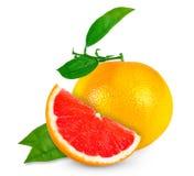 grapefruit Foto de Stock Royalty Free