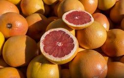 grapefruit Imagens de Stock