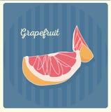 grapefruit ilustração stock