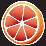 grapefruit ilustração royalty free