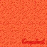 Grapefruit abstract pattern Royalty Free Stock Photography