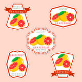 The grapefruit. Abstract vector illustration logo for whole ripe fruit orange grapefruit citrus cut sliced.Grapefruit drawing consisting of tag label bow peel Stock Images