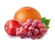 Grapefruit, Apple en druiven op witte achtergrond wordt geïsoleerd die Royalty-vrije Stock Fotografie