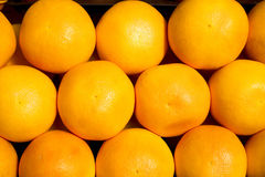 Grapefruit background Stock Image