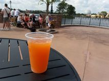 Grapefruit Beer. In Germany at Epcot Royalty Free Stock Image