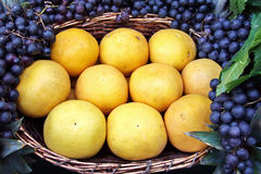 Grapefruit and black grapes. Beautiful fruit arrangement with grapefruit and grapes Stock Photography