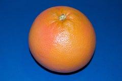 grapefruit-on-blue-background Royalty Free Stock Photos