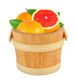 Grapefruit in the bucket Royalty Free Stock Photo