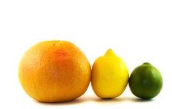 Grapefruit, citroen, kalk Stock Afbeeldingen