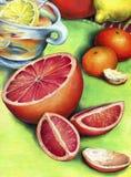Grapefruit, citroenthee en mandarin twee Stock Fotografie