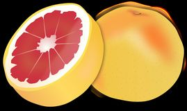Grapefruit, Citrus Fruit, Citrus Stock Photography
