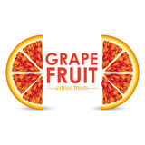 Grapefruit citrus fruit Royalty Free Stock Photo