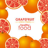 Grapefruit citrus fruit Stock Photography