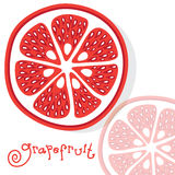 Grapefruit citrus fruits vector Stock Photo
