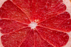 Grapefruit. Close up royalty free stock images