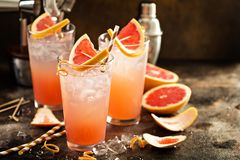 Grapefruit cocktail in tall glasses Stock Photos
