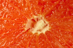 Grapefruit of cross section, central part Stock Photography