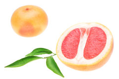 Grapefruit in a cut on a white background. Stock Photo