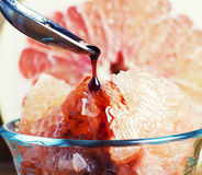 Grapefruit dessert Stock Image