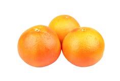 Grapefruit drie royalty-vrije stock afbeelding
