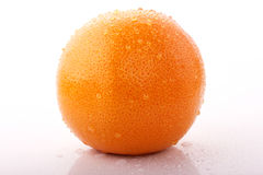 Grapefruit with drops Royalty Free Stock Photos