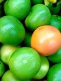 Grapefruit en Oroblanco royalty-vrije stock foto's