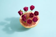 Grapefruit en rode rozen royalty-vrije stock foto's