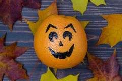 Grapefruit with a face drawn Royalty Free Stock Photos