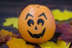 Grapefruit with a face drawn Stock Photography