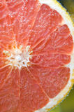 Grapefruit floating in soda water Stock Image