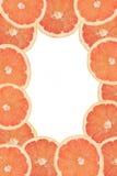 Grapefruit frame Stock Photography