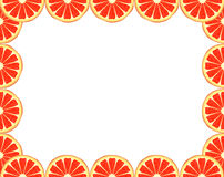 Grapefruit frame Stock Images