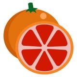 Grapefruit fresh juicy citrus fruit icon Royalty Free Stock Photo