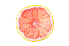 Grapefruit. Fresh grapefruit simple isolated picutre Stock Photography