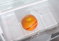 Grapefruit in fridge. Royalty Free Stock Photography