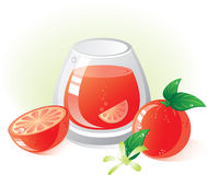 Grapefruit fruit and drink. Without transparency.  Vector illustration (EPS8). All parts (object) closed, possibility to edit.  Without a transparency Royalty Free Stock Photos