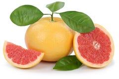 Grapefruit fruit grapefruits slice slices  on white. Background Stock Image
