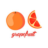 Grapefruit fruits poster in cartoon style depicting whole and half of fresh juicy citruses  on white background Stock Image