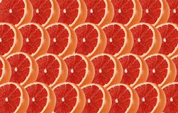 Grapefruit fruits slice abstract seamless pattern Royalty Free Stock Images