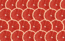 Grapefruit fruits slice abstract seamless pattern background Royalty Free Stock Photography