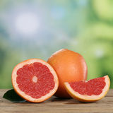 Grapefruit fruits in summer Stock Images