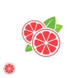 grapefruit Fruto abstrato no fundo branco ilustração royalty free