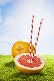 Grapefruit on grass, drinking straw, sunshine and clouds Stock Photography